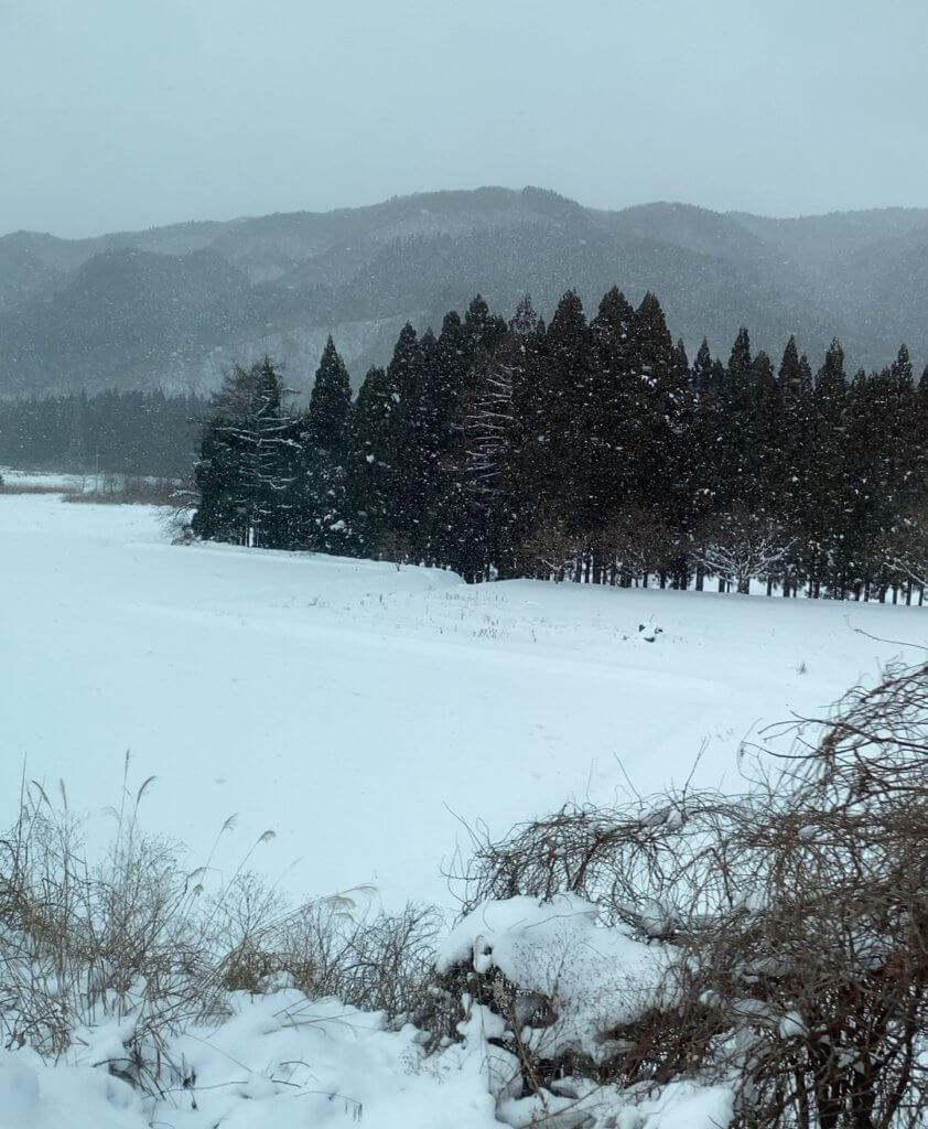 窓から見える景色に不安しかないけどテンション上がる静岡県民